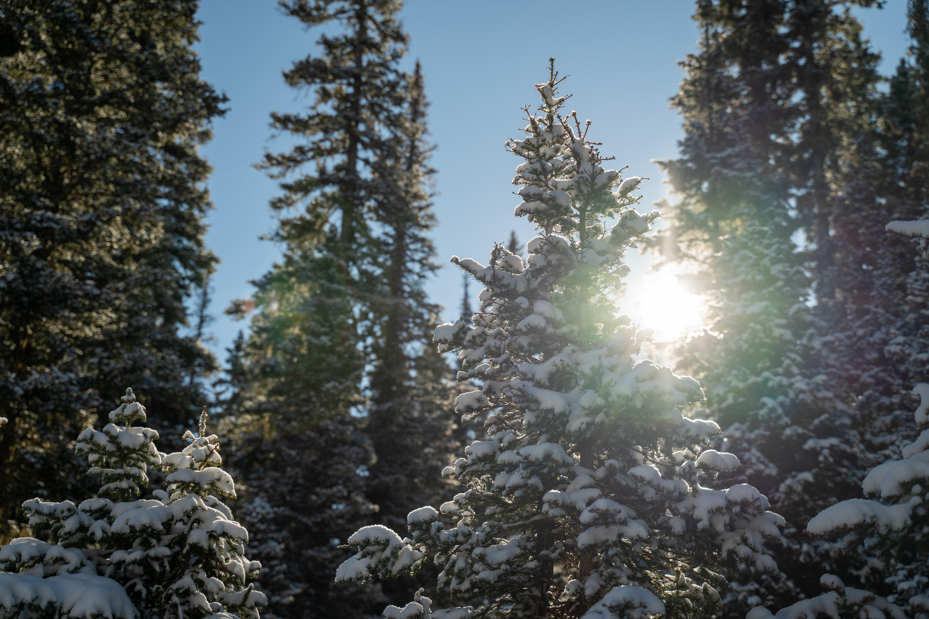 10-27-20-_-Snow-and-Snowmaking-web-16